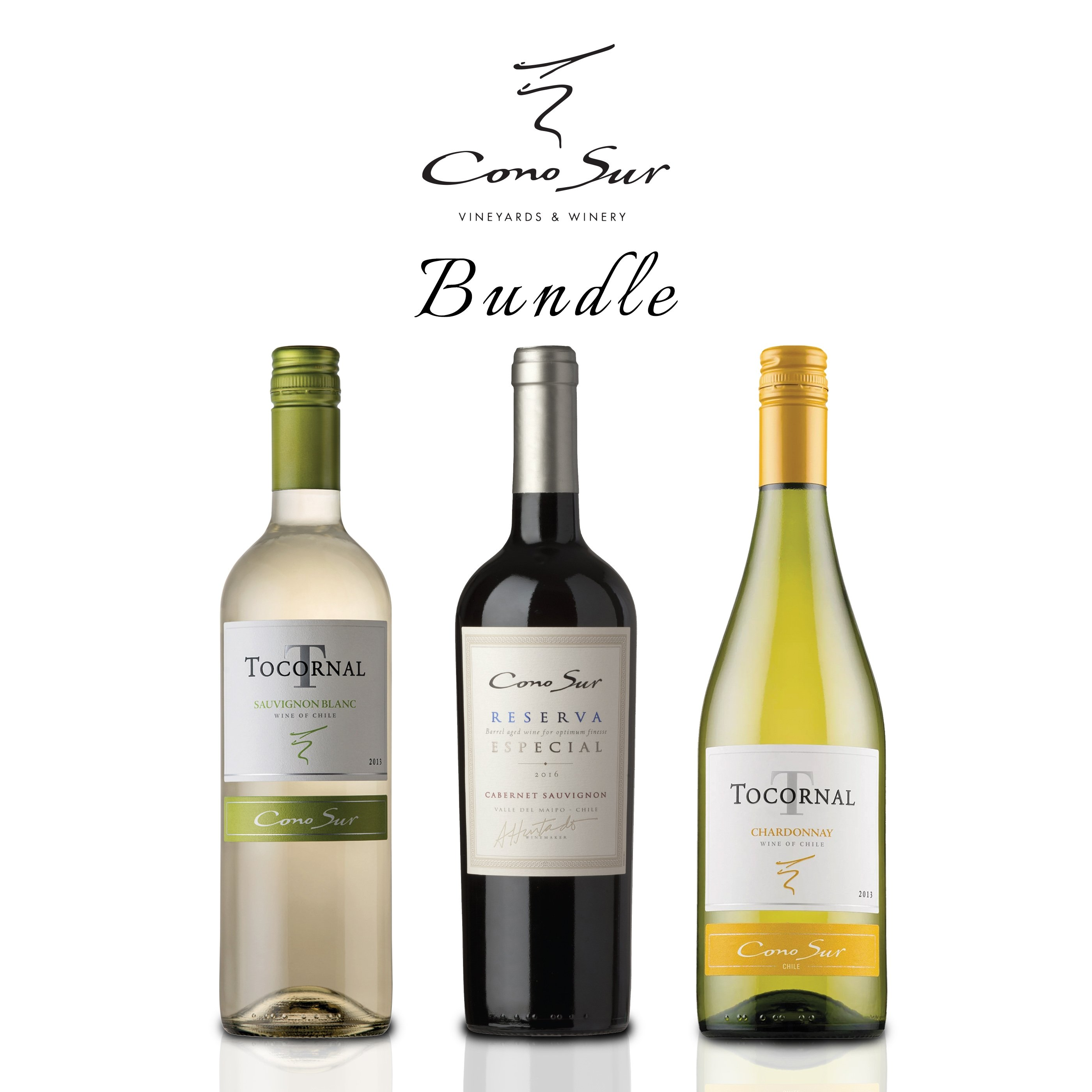 Cono Sur Wine Bundle